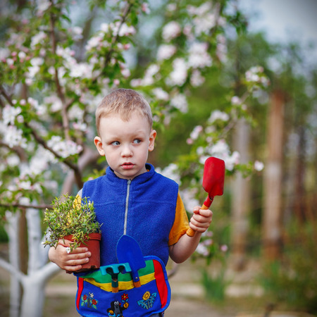 Handsome little blond boy planting and gardening flowers in garden or farm in spring day photo