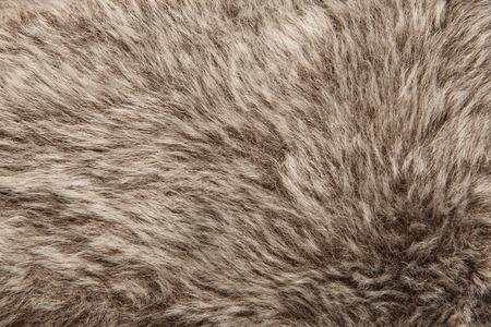 peltry: Artificial fur texture background