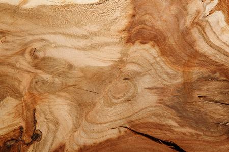 tronco: Fondo de la textura de la madera natural. Cierre de la sección transversal del tronco de un árbol. árbol viejo tocón de textura de fondo Foto de archivo