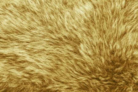 pelage: Artificial fur texture background
