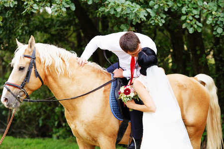 horse love horse kiss animal love: Wedding. Bride and groom with  horse. bride and groom on a horses in the forest