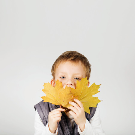 Portrait of happy joyful beautiful little boy against white background. Child holding a yellow maple leaves. Kid throws up a autumn yellowed foliage