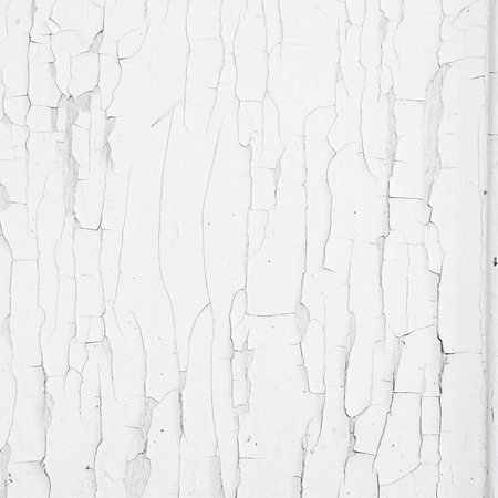 of irradiated: Cracking and peeling white paint on a wall. Vintage wood background with peeling paint. Old board with Irradiated paint
