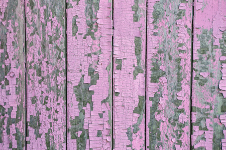 of irradiated: Cracking and peeling pink paint on a wall. Vintage wood background with peeling paint. Old board with Irradiated paint Stock Photo