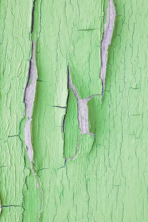 of irradiated: Cracking and peeling green paint on a wall. Vintage wood background with peeling paint. Old board with Irradiated paint