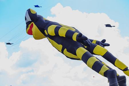 adelaide: kites flying in a blue sky. Kites of various shapes. kiting