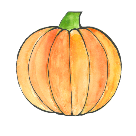 Pumpkin by a watercolour isolated on white background. Watercolor postcard, illustration