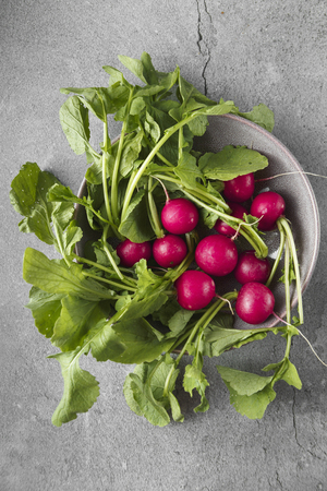 Freshly harvested, purple colorful radish in the bowl on gray concrete background. Growing radish. Growing vegetables. Seasonal Cooking, food styling. European red radishes (Raphanus sativus). raw foods concept