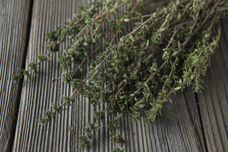 thyme - aromatic plant of the mint family are used as a culinary herb, and the plant yields a medicinal oil 写真素材