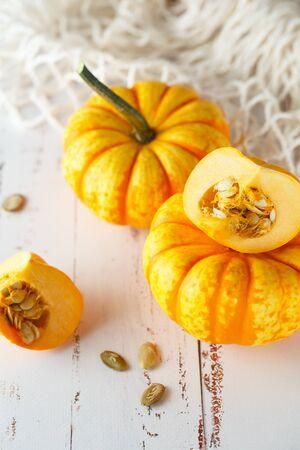 Still life composition with colorful decorative mini pumpkins and pumpkin seeds. Mini orange pumpkins, holiday decoration. Different sorts of mini pumkins