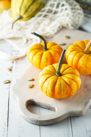 Still life composition with colorful decorative mini pumpkins and pumpkin seeds. Mini orange pumpkins, holiday decoration. Different sorts of mini pumkins