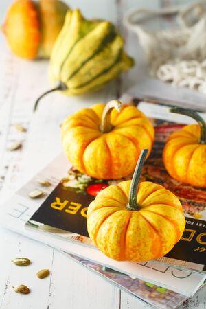 Still life composition with colorful decorative mini pumpkins. Mini orange pumpkins, holiday decoration. Different sorts of mini pumkins