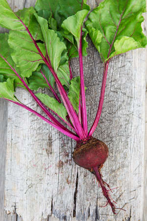 Fresh beetroot with leaves on a wooden board. Healthy food. Beetroots. Organic beet, beetroot on gray rustic background. Green living concept. Organic food.