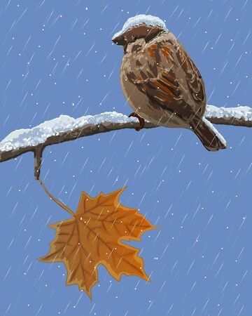 Sparrow on a branch in the snow Vector