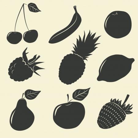 citrus tree: Frutas y bayas iconos - ilustraci�n vectorial Vectores
