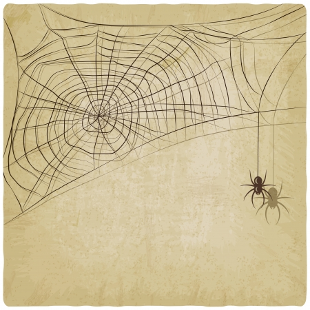 Vintage background with spider web - vector illustration Vector