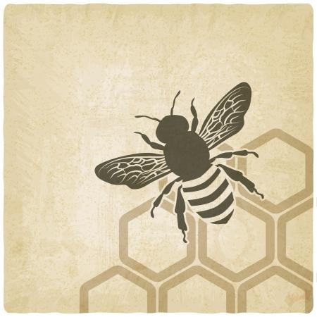 꿀벌 오래 된 배경 - 벡터 일러스트 레이 션