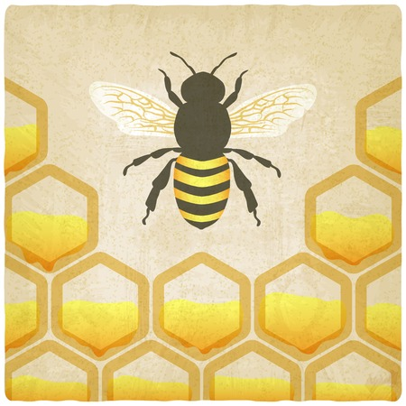 mead: bee honeycomb old background illustration