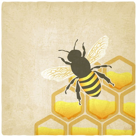bee honeycomb old background illustration