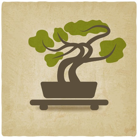 bonsai old background - vector illustration Vector