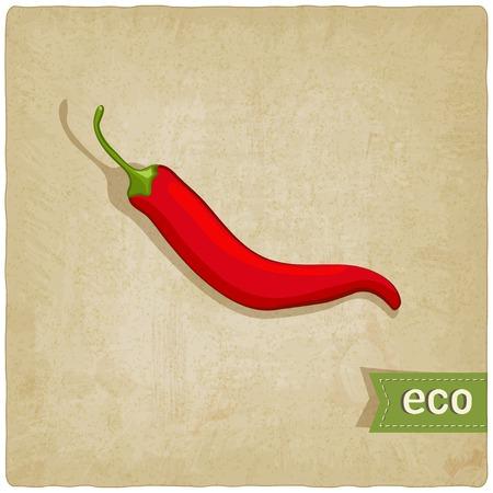 vegetable eco old background - vector illustration  eps 10 Vector