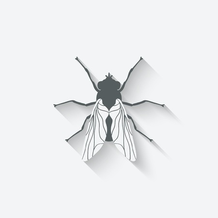 musca domestica: fly insect icon - vector illustration. eps 10