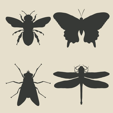 insects icon set - vector illustration. eps 8 Vector