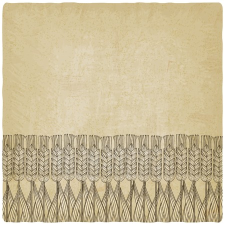 ard: wheat harvest old background - vector illustration.  Illustration
