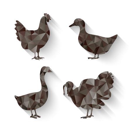 fowl: domestic fowl symbol