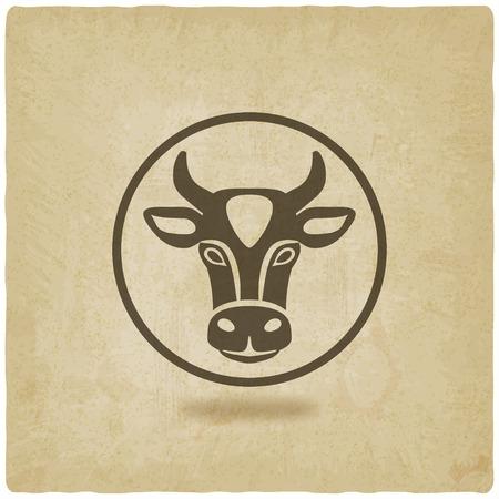 Cabeza de vaca viejo fondo Foto de archivo - 36363412