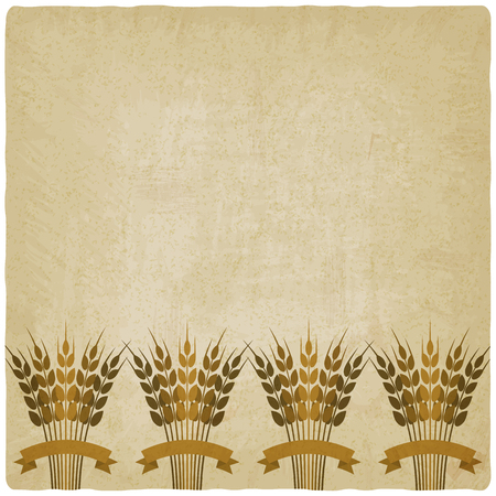 brown rice: Golden sheafs of wheat with ribbons on vintage background. vector illustration  Illustration