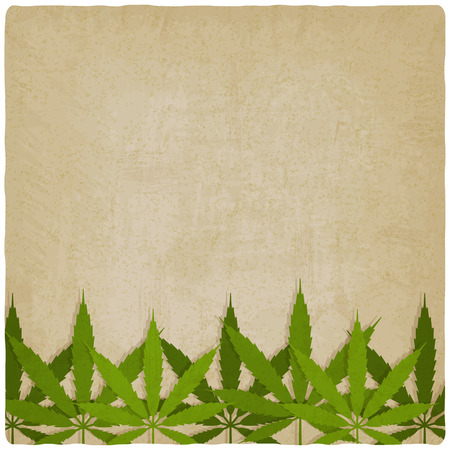 marihuana: hojas de marihuana en el fondo del grunge. ilustraci�n vectorial