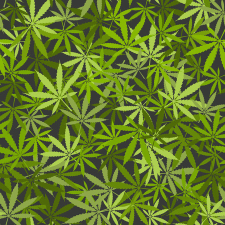 cannabis leaf: marijuana leaves seamless background. vector illustration