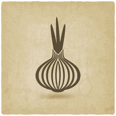 onion: onion old background. vector illustration
