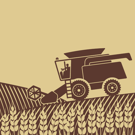 grain fields: combine harvester in field - vector illustration.