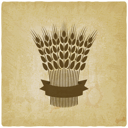 brown rice: sheaf of wheat with ribbon vintage background. vector illustration - eps 10 Illustration