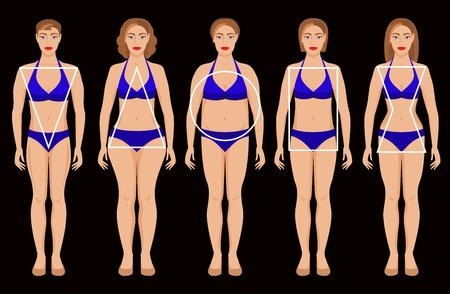 types of female figures. vector illustration