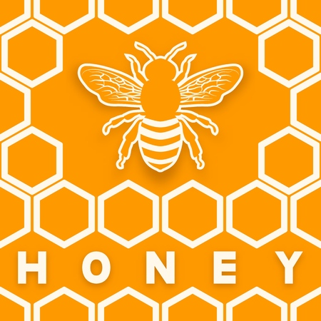 Honey bee on honeycomb orange background. vector illustration Illustration