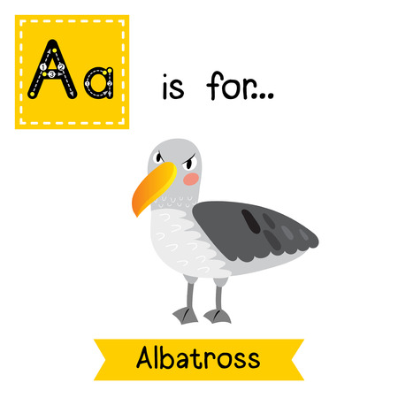 albatross: A letter tracing. Albatross. Cute children zoo alphabet flash card. Funny cartoon animal. Kids abc education. Learning English vocabulary. Vector illustration. Illustration