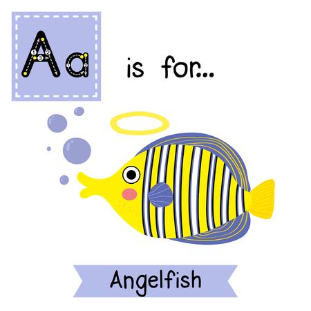 pterophyllum: A letter tracing. Angelfish. Cute children zoo alphabet flash card. Funny cartoon animal. Kids abc education. Learning English vocabulary. Vector illustration. Illustration