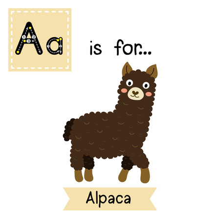 learning english: A letter tracing. Dark brown Alpaca. Cute children zoo alphabet. Funny cartoon animal. Kids abc education. Learning English vocabulary. Vector illustration.