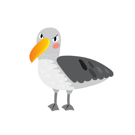 albatross: Albatross bird cartoon character. Isolated on white background. Vector illustration.