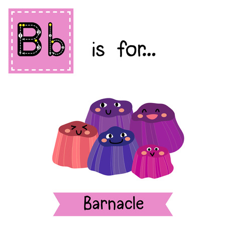 B letter tracing. Happy smiling Barnacles. Cute children zoo alphabet flash card. Funny cartoon animal. Kids abc education. Learning English vocabulary. Vector illustration.