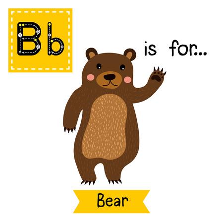 flash card: B letter tracing. Standing Bear raising hand. Cute children zoo alphabet flash card. Funny cartoon animal. Kids abc education. Learning English vocabulary. Vector illustration.