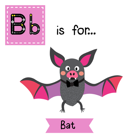 bat animal: B letter tracing. Flying colorful Bat with bow. Cute children zoo alphabet flash card. Funny cartoon animal. Kids abc education. Learning English vocabulary. Vector illustration.