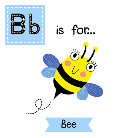 flash card: B letter tracing. Happy Bee flying. Cute children zoo alphabet flash card. Funny cartoon animal. Kids abc education. Learning English vocabulary. Vector illustration.
