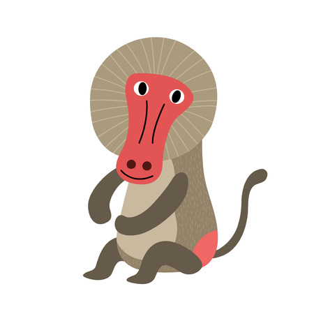 baboon: Sitting Baboon cartoon character. Isolated on white background. Vector illustration.