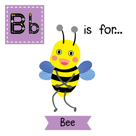 flash card: B letter tracing. Happy Bee standing. Cute children zoo alphabet flash card. Funny cartoon animal. Kids abc education. Learning English vocabulary. Vector illustration.