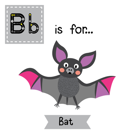 learning english: B letter tracing.Flying colorful Bat. Cute children zoo alphabet flash card. Funny cartoon animal. Kids abc education. Learning English vocabulary. Vector illustration. Illustration