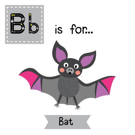 B letter tracing.Flying colorful Bat. Cute children zoo alphabet flash card. Funny cartoon animal. Kids abc education. Learning English vocabulary. Vector illustration. Illustration